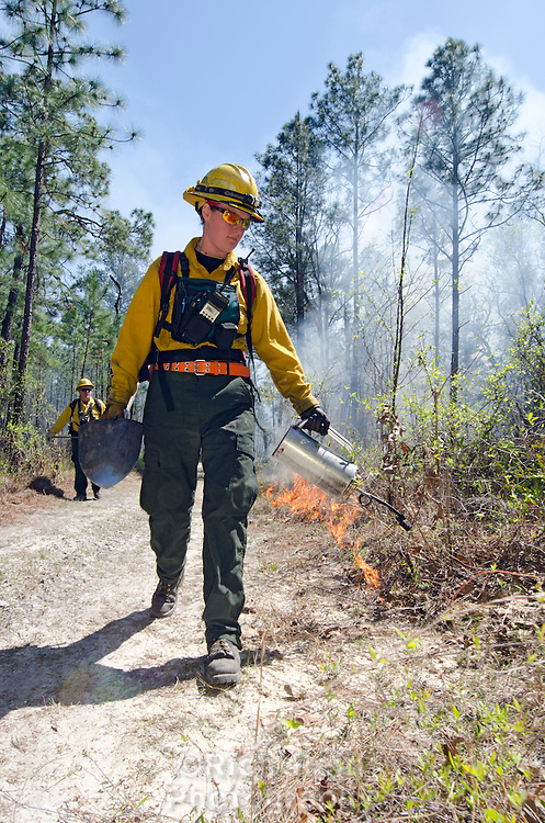 Erica Pfleiderer lighting a prescribed fire with a drip torch in Moody Forest Natural Area managed by The Nature Conservancy near Baxley, Georgia.