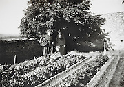 two woman posing in the vegetable garden France