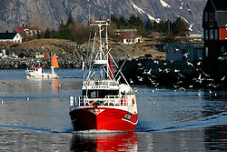 NORWAY LOFOTEN 27MAR07 - Lofoten fishing boats return to port in Henningsvaer on the Lofoten islands...jre/Photo by Jiri Rezac..© Jiri Rezac 2007..Contact: +44 (0) 7050 110 417.Mobile:  +44 (0) 7801 337 683.Office:  +44 (0) 20 8968 9635..Email:   jiri@jirirezac.com.Web:    www.jirirezac.com..© All images Jiri Rezac 2007 - All rights reserved.