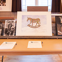Primrose Donkey Sactuary Kick Ass Gala and Auction, October 17, 2015. Warkworth, ON
