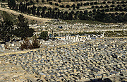 The old Jewish cemetery on Mount Olives, Jerusalem over looking the old city