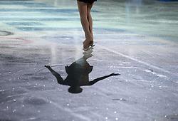 The XXII Winter Olympic Games 2014 in Sotchi, Olympics, Olympische Winterspiele Sotschi 2014<br /> Shadow, legs, leg, Eis, Eisflaeche,
