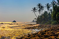 Coastline of the south coast of Sri Lanka at Ahangama, Southern Province.