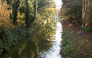 Treelined stretch of the Kennet and Avon canal, autumn leaf colours, Wilcot, near Pewsey, Wiltshire, England, UK