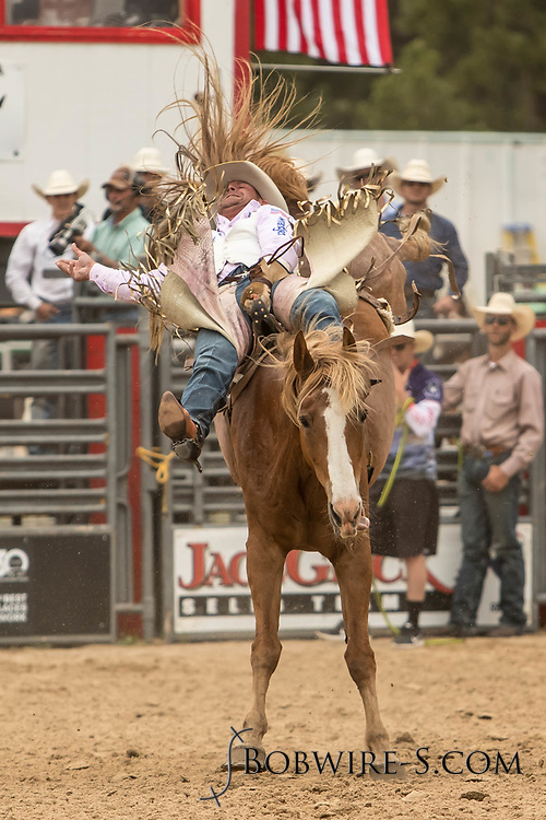 Bareback rider Kelly Timberman rides Summit Pro Rodeo's Trailer Home during the third performance of the Elizabeth Stampede on Sunday, June 3, 2018.