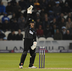Sussex's Ben Brown appeals.  - Mandatory by-line: Alex Davidson/JMP - 01/06/2016 - CRICKET - The 1st Central County Ground - Hove, United Kingdom - Sussex v Somerset - NatWest T20 Blast
