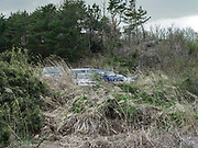 Cars lie abandoned on edge of the exclusion zone, near Namie, Japan.