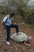 Janie & Pietro Corbisiero<br /> Santa Cruz Highlands<br /> Galapagos<br /> Ecuador, South America