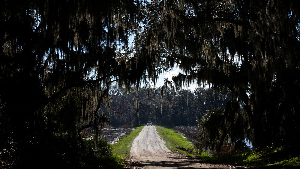 BLUFFTON, S.C. - FEBRUARY 20, 2018:<br /> Rick Kanaski, Regional Archaeologist &amp; Regional Historic Preservation Officer for the U.S. Fish and Wildlife Service drives down a levee at the Savannah National Wildlife Refuge. (WABE Photo/Stephen B. Morton)