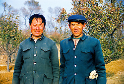 China, Taiyuan, 2008. Partners from dawn until dusk, these Juewei mountain apple farmers rotate their duties - one manages the horse and hand-plow, the other tends the trees that are their livelihood.