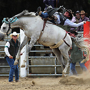 Ross Dowling from Hyde in action during the Open Bareback competition at the Southland Rodeo, Invercargill,  New Zealand. 29th January 2012