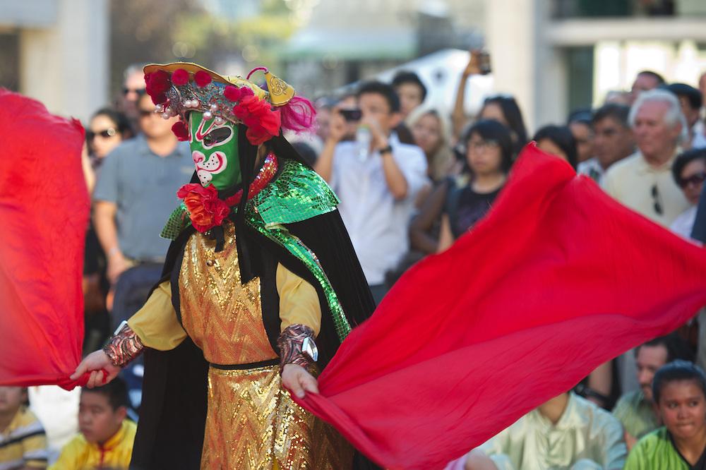 Chinese American Arts Council Martial Arts Society (2011)