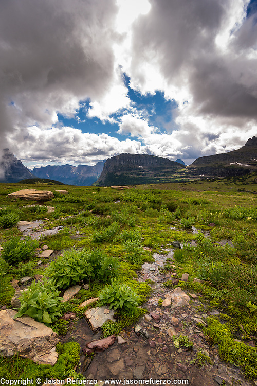 The view from the top of Logans Pass, Glacier National Park, MT