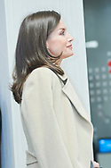 Queen Letizia of Spain attends Working meeting in the Spanish Red Cross in the framework of the conference on 'Gender Violence: Strategy and challenges' at Spanish Red Cross Headquarters on January 16, 2020 in Madrid, Spain