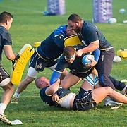 20171121 Rugby : Allenamento nazionale italiana