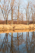 Shiawassee NWR, Saginaw County, Michigan