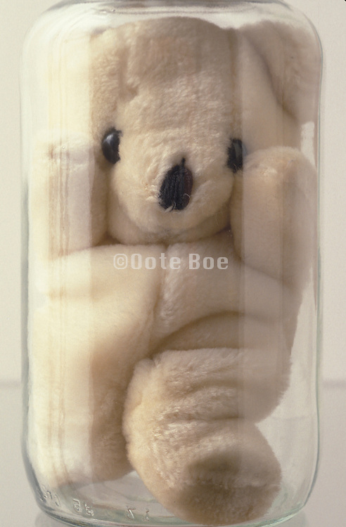 teddy bear stuffed in a jar