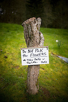 "A tree stump with a ""do not pick the flowers"" sign"