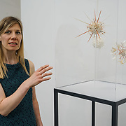 London, UK. 26th June 2017. Artist Laura Youngson Coll - Pathogenesis PHOTOCALL at Jerwood Makers Open 2017 for  the sixth edition of Jerwood Makers Open at Jerwood Space, London.