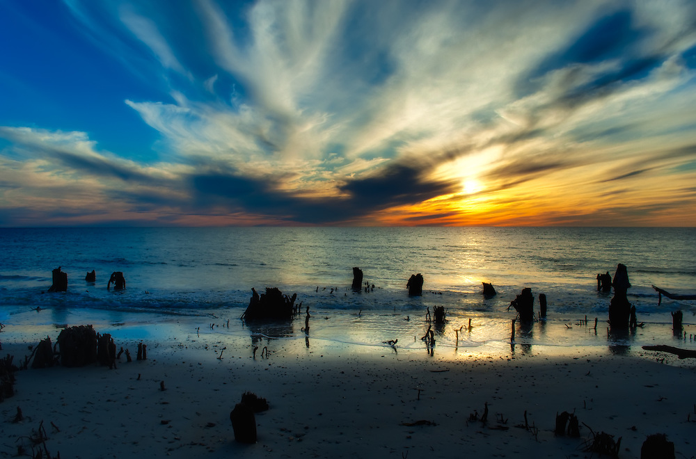 This beautiful sunset was photographed in North Florida on the Gulf of Mexico. The tree stumps in the water are old pine trees after hurricanes and erosion have turned the forest into coastline.