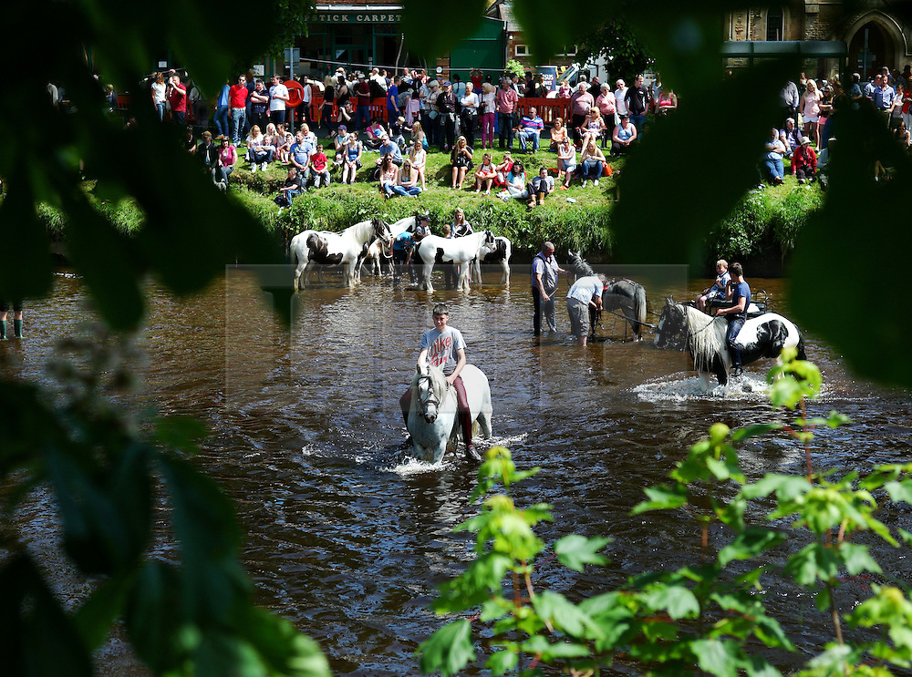 © Licensed to London News Pictures. <br /> 06/06/2014. <br /> <br /> Appleby, Cumbria, England<br /> <br /> Horses are taken into the River Eden to be washed as is the tradition as gypsies and travellers gather during the annual horse fair on 6 June, 2014 in Appleby, Cumbria. The event remains one of the largest and oldest events in Europe and gives the opportunity for travelling communities to meet friends, celebrate their music, folklore and to buy and sell horses.<br /> <br /> The event has existed under the protection of a charter granted by King James II in 1685 and it remains the most important event in the gypsy and traveller calendar.<br /> <br /> Photo credit : Ian Forsyth/LNP