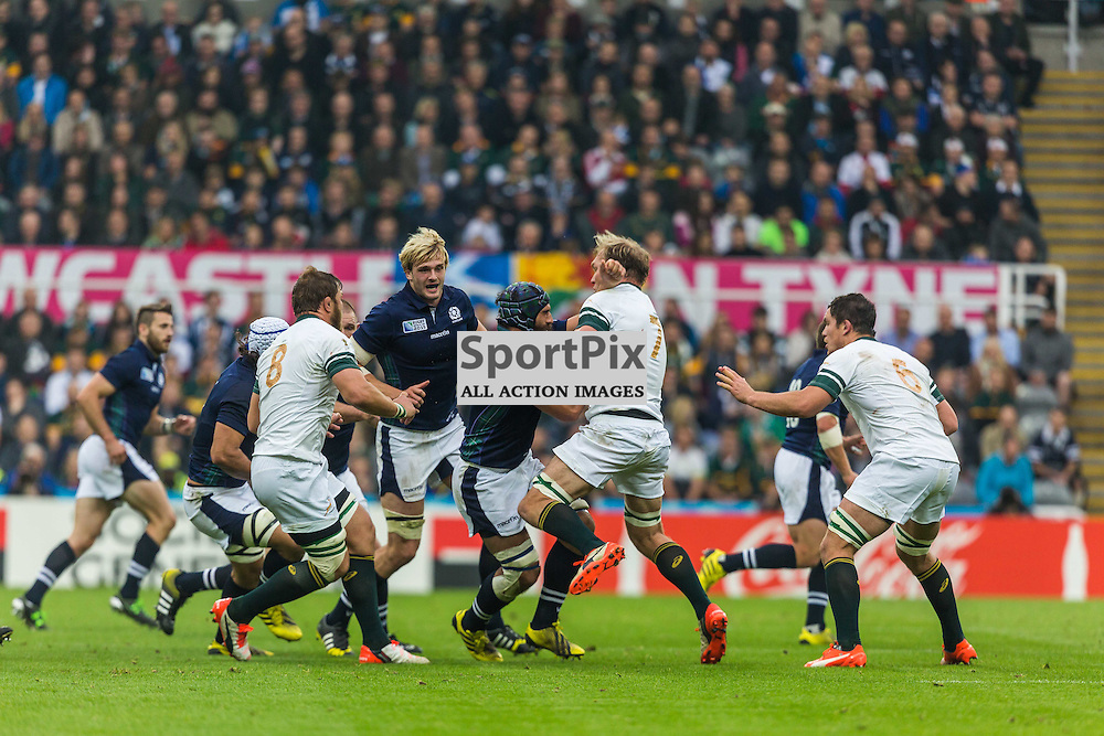 Josh Strauss in action during the Rugby World Cup match between Scotland and South Africa (c) ROSS EAGLESHAM | Sportpix.co.uk