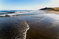 Ocean Beach, Hawke's Bay.