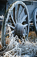 Frost on a wagon wheel