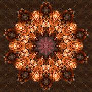 Lobster mandala on portobello kaleidoscope