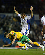 Leeds - Monday October 19th, 2009: Bradley Johnson (R) of Leeds United and Chris Martin of Norwich City during the Coca Cola League One match at Elland Road, Leeds. (Pic by Paul Thomas/Focus Images)..