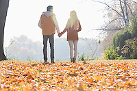 Rear view of couple holding hands in park during autumn