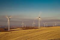 electric generating windmills in the Palouse region of eastern Washington, USA