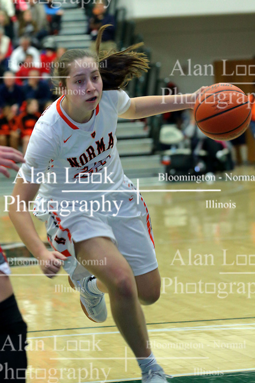 30 December 2017: State Farm Holiday Classic Coed Basketball Tournament at Shirk Center in Bloomington IL<br /> <br /> SFHC - Large School Girls Morton Potters v Normal Community Ironmen Championship