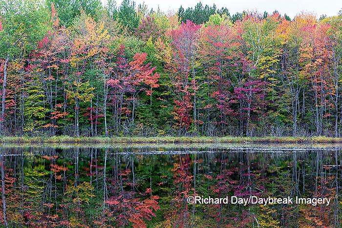 64776-01913 Thornton Lake in fall color Alger Co.  MI