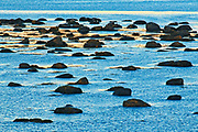 Rocks in Gulf of St. Lawrence at dusk, Baie Comeau, Quebec, Canada