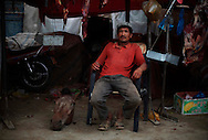 A Uighur minority man offers a horse's head at his butcher shop in the Sunday Bazaar in Hotan, China, Sunday, July 12, 2009.