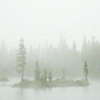 A remote alpine lake enclosed in thick fog. Courtenay, Vancouver Island, British Columbia, Canada, Pacific Northwest.
