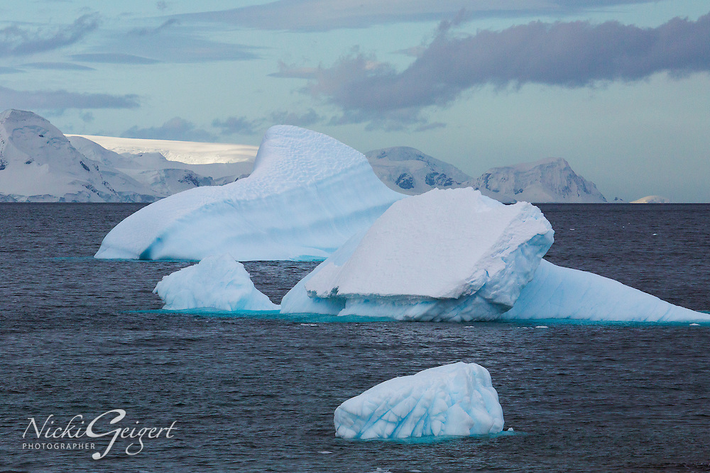 Icebergs with interesting shapes at sea with glaciers in background. Seascape and icescape photography wall art. Fine art photography prints, stock images.