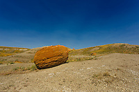 "Images from a trip to Red Rock Coulee in Southwestern Alberta.<br /> <br /> The area is home to hundreds of ""spherical concretions"", which are huge red rocks that have eroded much more slowly than the surrounding soil. They are similar to hoodoos, which are more commonly found in the badlands of central Alberta.<br /> <br /> Red Rock Coulee is one of those extremely interesting places that is unlike anywhere else that you'll ever visit.<br /> <br /> ©2014, Sean Phillips<br /> http://www.RiverwoodPhotography.com"