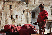 Detail of worker, Chouara tannery, Fez, Morocco, pictured on February 22, 2009 in the morning. The Chouara tannery is the largest of the four ancient tanneries in the Medina of Fez where the traditional work of the tanners has remained unchanged since the 14th century. It is composed of numerous dried-earth pits where raw skins are treated, pounded, scraped and dyed. Tanners work in vats filled with various coloured liquid dyes derived from plant sources. Colours change every two weeks, poppy flower for red, mint for green, indigo for blue, chedar tree for brown and saffron for yellow. Fez, Morocco's second largest city, and one of the four imperial cities, was founded in 789 by Idris I on the banks of the River Fez. The oldest university in the world is here and the city is still the Moroccan cultural and spiritual centre. Fez has three sectors: the oldest part, the walled city of Fes-el-Bali, houses Morocco's largest medina and is a UNESCO World Heritage Site;  Fes-el-Jedid was founded in 1244 as a new capital by the Merenid dynasty, and contains the Mellah, or Jewish quarter; Ville Nouvelle was built by the French who took over most of Morocco in 1912 and transferred the capital to Rabat. Picture by Manuel Cohen.