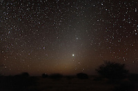 Zodiacal Light  Namibia