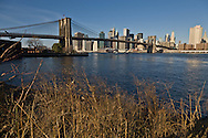 New York. downtown Manhattan cityscape , Brooklyn bridge and the East river. view from Fulton ferry park and promenade,  Manhattan skyline  New York  United states / plage , le Fulton ferry park et promenade. le pont de Brooklyn  et le panorama de downtown Manhattan skyline New York  Etats-unis