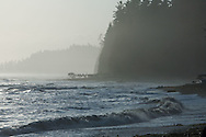 West Coast Trail - Day 2.  Surf break and forested shoreline at sunset.