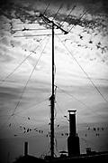 Javier Calvelo/ URUGUAY/ MONTEVIDEO/ Brazo Oriental/ Recorrido para Montevideo Ciudad Ocre - Azoteas de mi barrio.<br /> En la foto:  Azoteas, Brazo Oriental. Foto: Javier Calvelo <br /> 20140901  dia lunes