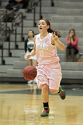 08 February 2014:  Amanda Kelly during an NCAA women's division 3 CCIW basketball game between the Elmhurst Bluejays and the Illinois Wesleyan Titans in Shirk Center, Bloomington IL