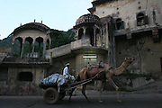 A village man transports his wares on a camel drawn cart through the entrance to the pink city of Jaipur, Rajasthan, India..Photo by Suzanne Lee