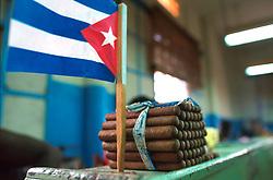 HAVANA, CUBA - AUGUST 24, 2001 - Hand rolled Cuban cigars. (PHOTO © JOCK FISTICK)