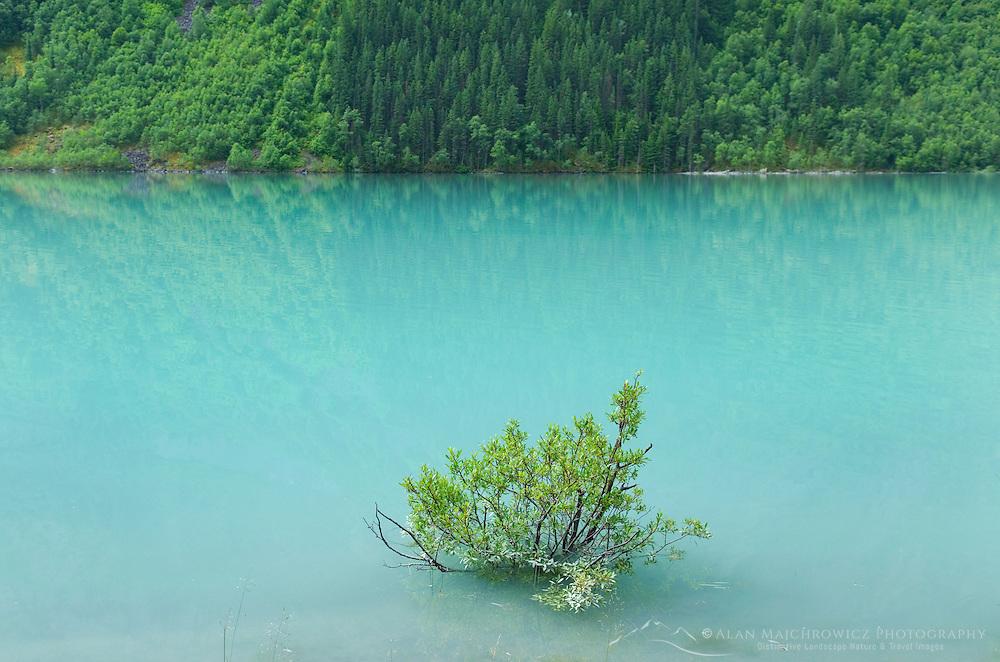 Kinney Lake, Mount Robson Provincial Park British Columbia Canada