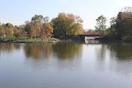 Jackson Park BID