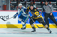 REGINA, SK - MAY 21: Tanner Nagel #25 of Swift Current Broncos checks Marian Studenic #28 of Hamilton Bulldogs at the Brandt Centre on May 21, 2018 in Regina, Canada. (Photo by Marissa Baecker/CHL Images)